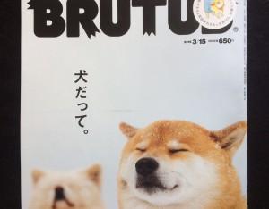 『犬だって。』