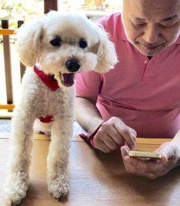 『愛犬生活』